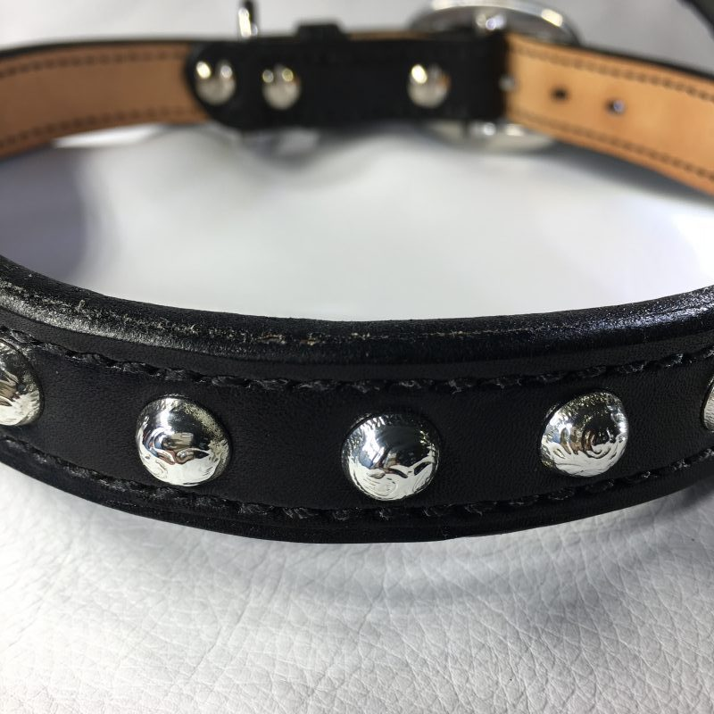 collar_studs